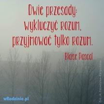 mem_dwie_przesady