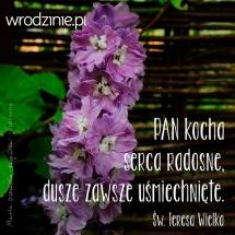mem_serca_radosne