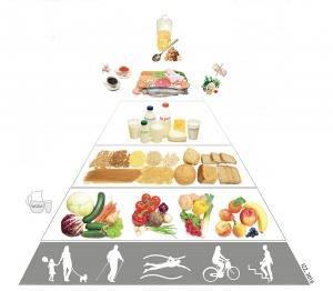 Piramida aktywności izywienia