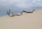 sand-desert-beach-dunes-holiday-hot-road-summer